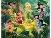 Fototapeta 3D Fairies Walltastic 41325, 305 x 244 cm Fototapety pro děti - Rozměr 244 x 305 cm