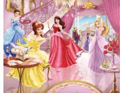 Fototapeta 3D Princezny Walltastic 40649, 305 x 244 cm Fototapety pro děti - Rozměr 244 x 305 cm