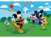 Fototapeta Mickey a přátelé FTDS-0253, rozměry 360 x 254 cm Fototapety skladem