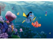 Fototapeta Nemo FTDS-2223, rozměry 360 x 254 cm Fototapety skladem