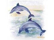 Samolepky na kachličky set 6ks delfíni Nálepky na kachličky