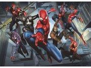 Fototapeta Spiderman FTDM-0751, rozměry 160 x 115 cm Fototapety pro děti - Rozměr 160 x 115 cm