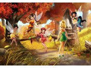Fototapeta Fairies FTDNXXL-XXL5062, rozměry 360 x 270 cm Fototapety pro děti - Fototapety dětské vliesové