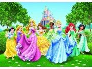 Fototapeta Princezny FTDNXXL-XXL5067, rozměry 360 x 270 cm Fototapety pro děti - Fototapety dětské vliesové
