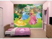 Fototapeta 3D Disney Princezny Walltastic 43800, 305 x 244 cm Fototapety pro děti - Rozměr 244 x 305 cm