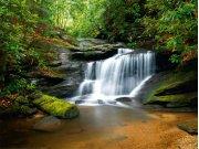 Fototapeta Lesní vodopád FTNS-2450, rozměry 360 x 270 cm Fototapety vliesové