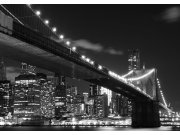 Fototapeta Brooklyn bridge FTNS-2469, rozměry 360 x 270 cm Fototapety vliesové
