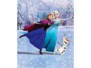 3D fototapeta Walltastic Frozen 43909, 203 x 243 cm Fototapety pro děti - Rozměr 203 x 243 cm