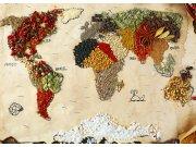 Fototapeta Mapa světa s koření FTNXXL-2484, 360x270 cm Fototapety vliesové