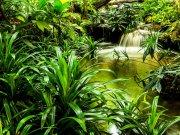 Fototapeta Přírodní laguna FTNXXL-2491, 360x270 cm Fototapety vliesové