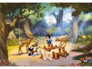 Fototapeta Sněhurka v lese FTDXXL-0265, rozměry 360 x 255 cm Fototapety pro děti - Rozměr 360 x 255 cm