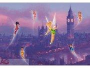 Fototapeta Fairies in the night FTDNXXL-XXL5008, rozměry 360 x 270 cm Fototapety pro děti - Fototapety dětské vliesové