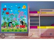 Vliesová fototapeta Krtek a autíčko FTDNXL-5146, 180 x 202 cm Fototapety pro děti - Fototapety dětské vliesové