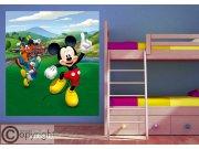 Vliesová fototapeta Mickey Mouse FTDNXL-5148, 180 x 202 cm Fototapety pro děti - Fototapety dětské vliesové