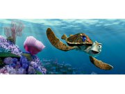 Fototapeta vliesová Nemo a Želva FTDNH-5312, 202 x 90 cm Fototapety skladem
