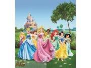 Vliesová fototapeta Princezny na louce FTDNXL-5112, rozměry 180 x 202 cm Fototapety pro děti - Fototapety dětské vliesové