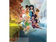 Fototapeta Fairies FTDXL-1905, rozměry 180 x 202 cm Fototapety pro děti - Rozměr 180 x 202 cm