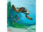 Vliesová fototapeta Nemo FTDNXL-5110, rozměry 180 x 202 cm Fototapety pro děti - Fototapety dětské vliesové
