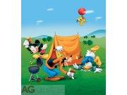 Fototapeta Mickey Picknick FTDNXL-5107, rozměry 180 x 202 cm Fototapety pro děti - Fototapety dětské vliesové