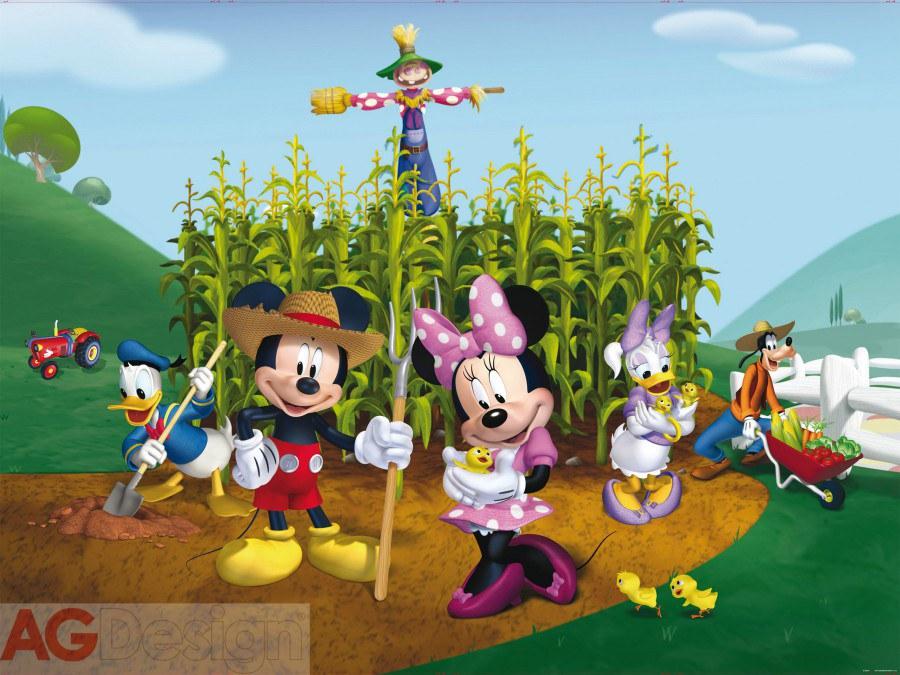Fototapeta Mickey and Minnie FTDNXXL-XXL5029, rozměry 360 x 270 cm - Fototapety dětské vliesové