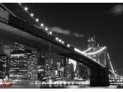 Fototapeta Bridge in Brooklyn FTS-1305, rozměry 360 x 254 cm Fototapety papírové