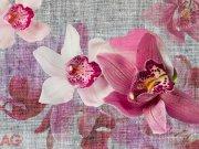 Fototapeta Orchids FTXXL-1438, rozměry 360 x 255 cm Fototapety papírové