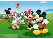 Fototapeta Mickey a kamarádi FTDM-0706, rozměry 160 x 115 cm Fototapety skladem