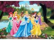 Fototapeta Princess FTDM-0711, rozměry 160 x 115 cm Fototapety pro děti - Rozměr 160 x 115 cm