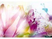 Fototapeta Light Flowers FTXXL-0125, rozměry 360 x 270 cm Fototapety skladem