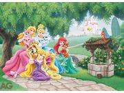 Fototapeta Princezny a zvířátka FTDM-0725, rozměry 160 x 115 cm Fototapety pro děti - Rozměr 160 x 115 cm