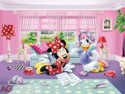 Fototapeta Minnie a Daisy FTDNXXL-XXL5035, rozměry 360 x 270 cm Fototapety pro děti - Fototapety dětské vliesové