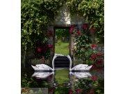 Fototapeta Swans FTNXL-2536, rozměry 180 x 202 cm Fototapety vliesové