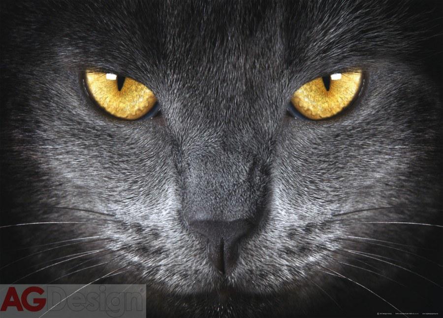Fototapeta Eyes FTNM-2640, rozměry 160 x 110 cm - Fototapety vliesové