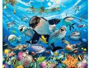 Fototapeta 3D Moře Walltastic 43190, 305 x 244 cm Fototapety skladem