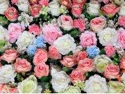 Fototapeta Flowers FTXXL-1468, rozměry 360 x 255 cm Fototapety papírové