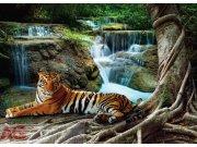 Fototapeta Tygr a vodopád FTNM-2652, rozměry 160 x 110 cm Fototapety vliesové