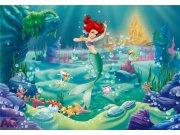 Fototapeta Ariel FTDNXXL-XXL5004, rozměry 360 x 270 cm Fototapety pro děti - Fototapety dětské vliesové