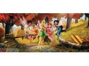 Fototapeta vliesová Fairies in forest FTDNH-5307, 202 x 90 cm Fototapety pro děti - Fototapety dětské vliesové
