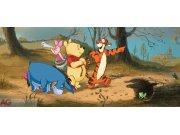 Fototapeta vliesová Medvídek Pú FTDNH-5317, 202 x 90 cm Fototapety pro děti - Fototapety dětské vliesové