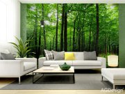 Fototapeta Forest FTS-1324, rozměry 360 x 254 cm Fototapety papírové