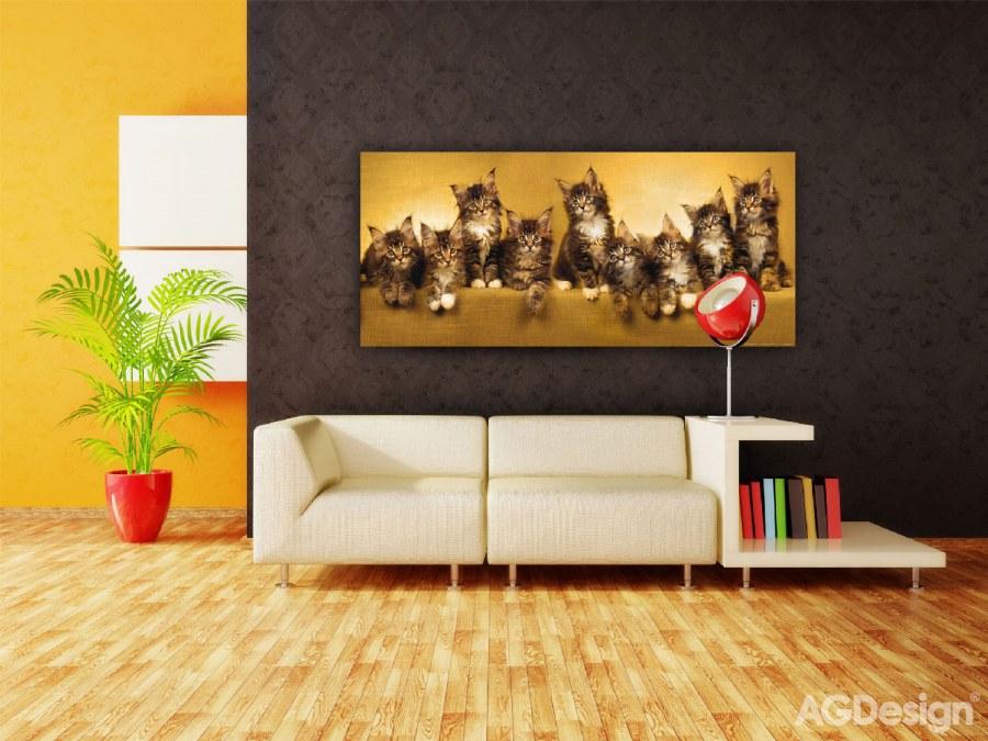 Fototapeta Kočky FTNH-2704, rozměry 202 x 90 cm - Fototapety skladem