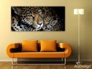 Fototapeta Leopard FTNH-2709, rozměry 202 x 90 cm Fototapety vliesové