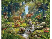 Fototapeta 3D Zvířátka z lesa Walltastic 43060, 305 x 244 cm Fototapety skladem