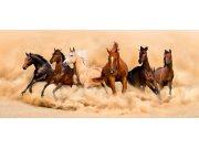 Fototapeta Stádo koní FTNH-2748, rozměry 202 x 90 cm Fototapety vliesové