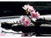 Fototapeta Pink on Stones FTS-0185, rozměry 360 x 254 cm Fototapety papírové