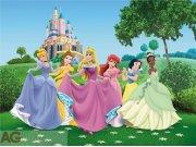 Fototapeta Princesses FTDXXL-0249, rozměry 360 x 255 cm Fototapety pro děti - Rozměr 360 x 255 cm